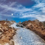 torauma 『Blue frost』