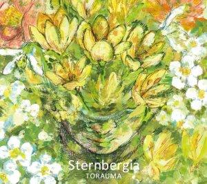 画像1: TORAUMA 『Sternbergia』